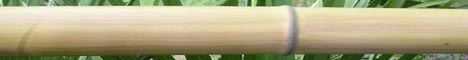 Bamfaux is also known as faux bamboo or Imitation Bamboo